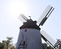 Windmühle Podersdorf